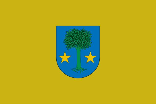 Bandera Allín