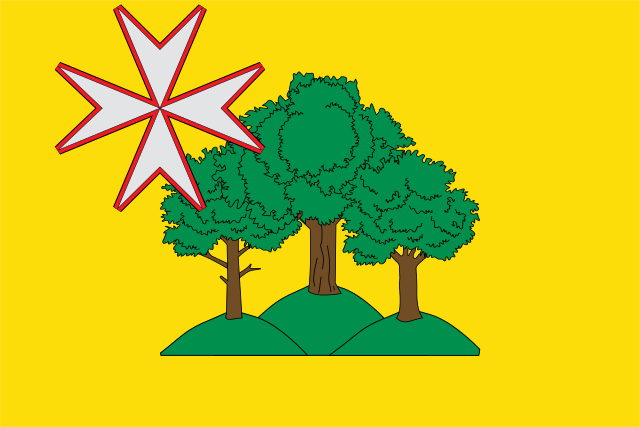 Bandera Almunia de San Juan
