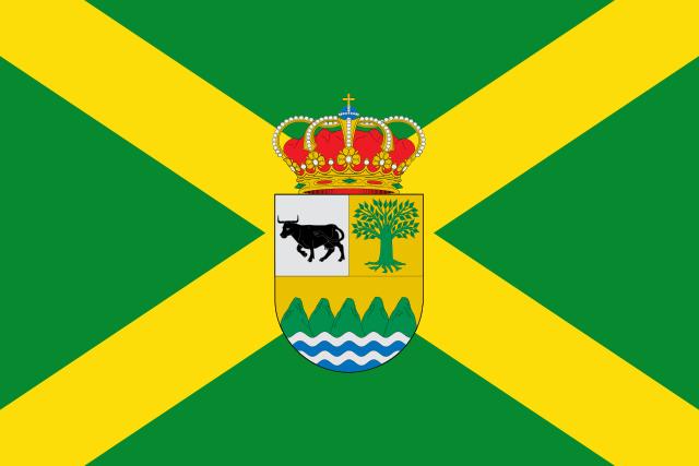 Bandera Amieva