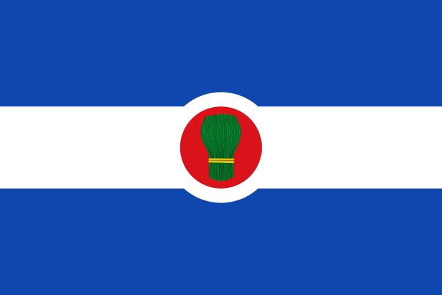Bandera Bagüés