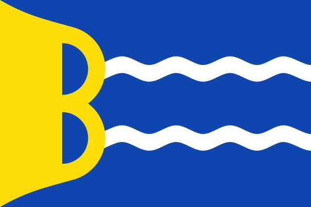 Bandera Bardallur