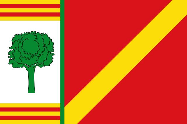 Bandera Barrachina