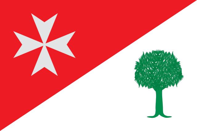 Bandera Binaced