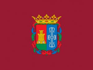 Bandera Burguillos