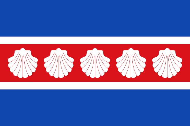 Bandera Camponaraya