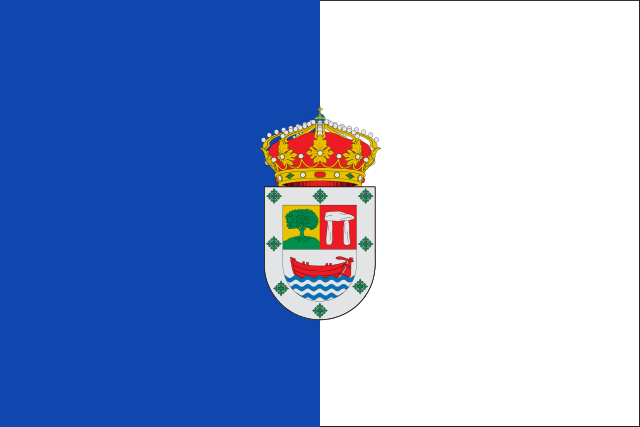 Bandera Cedillo