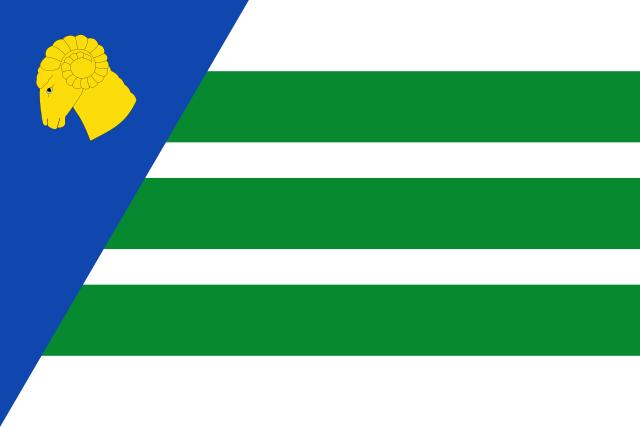Bandera El Buste