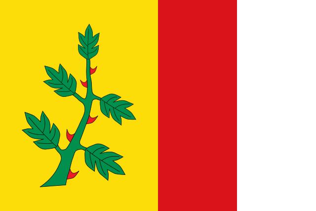 Bandera Espinosa de Villagonzalo