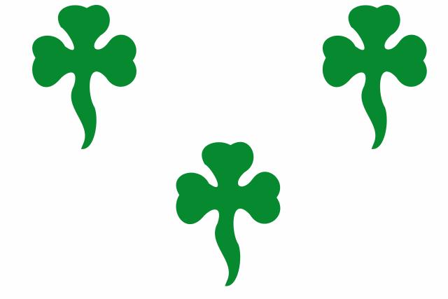 Bandera Freginals