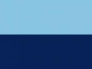 Bandera Garrucha