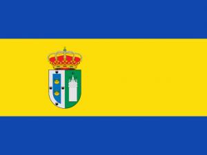 Bandera Gines