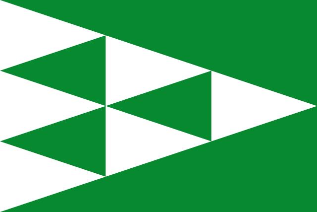 Bandera Guixers