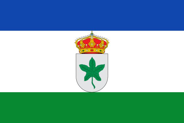 Bandera Higuera