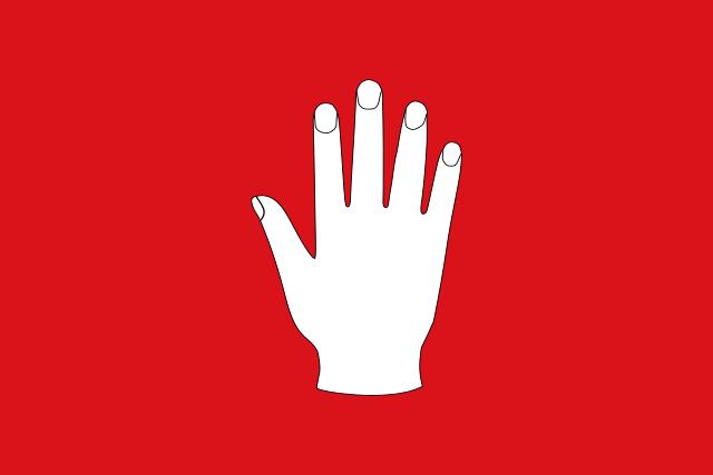 Bandera Madremanya