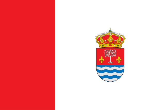 Bandera Magaz de Cepeda