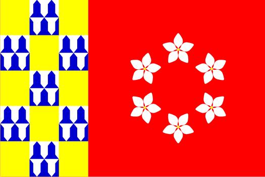 Bandera Nava