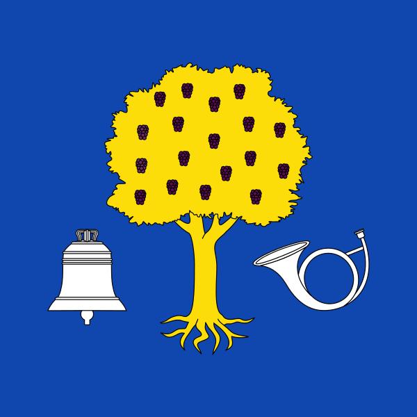 Bandera Navalmoral de la Mata