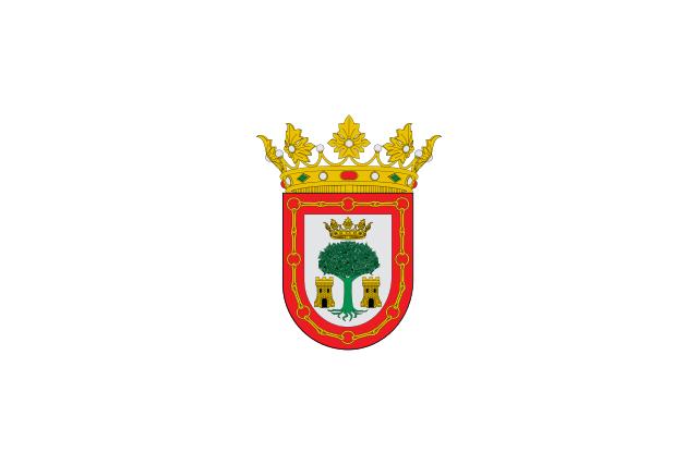 Bandera Olite