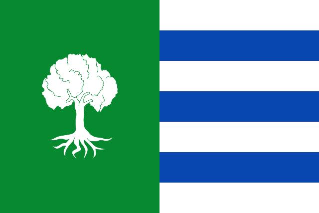 Bandera Olmedilla de Alarcón