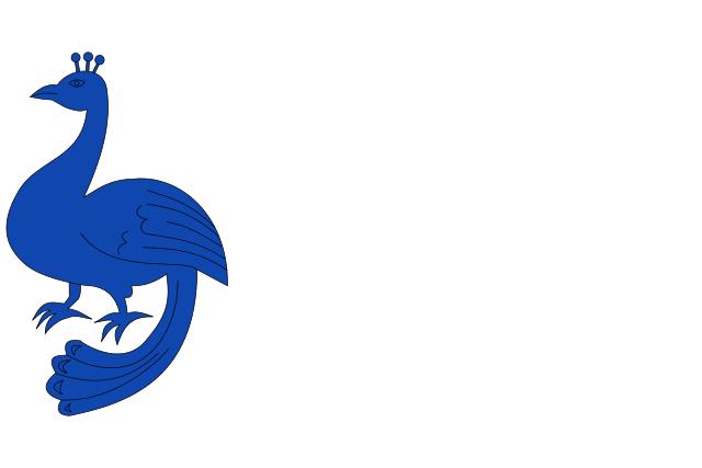 Bandera Pau