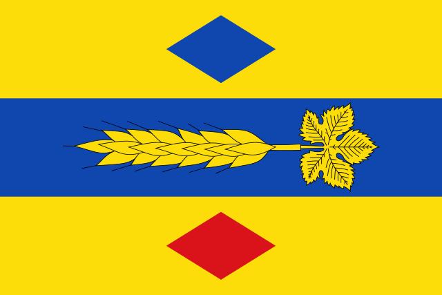 Bandera Plenas