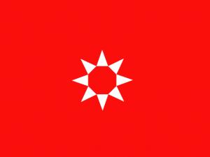 Bandera Rivas-Vaciamadrid