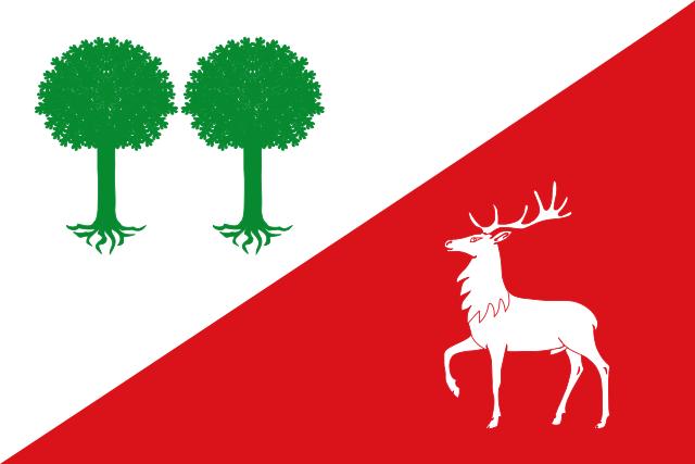 Bandera Robleda Cervantes