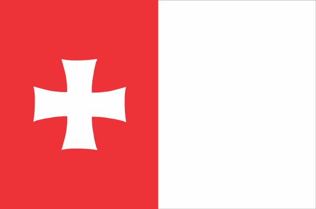 Bandera Rustavi