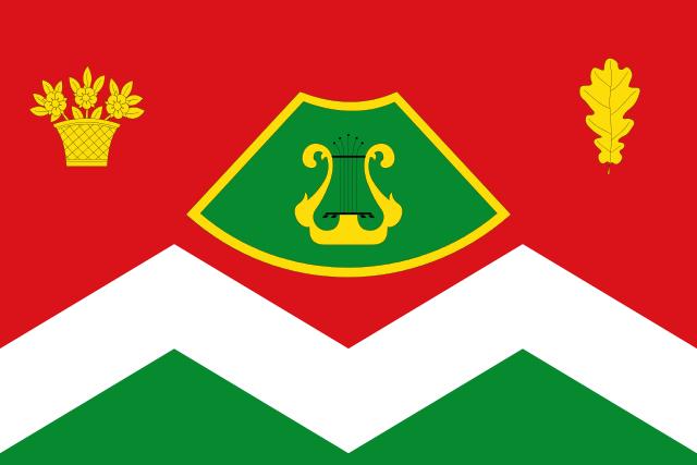 Bandera San Martín de la Virgen de Moncayo