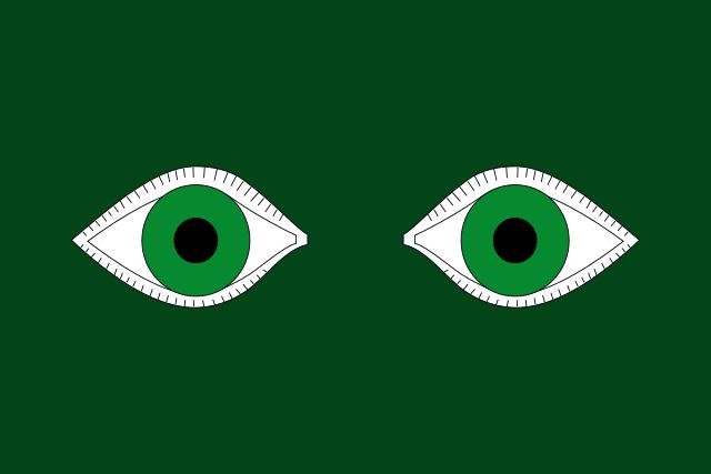 Bandera Sunyer