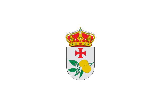 Bandera Taliga