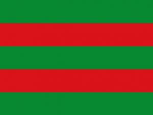 Bandera Torrelavega