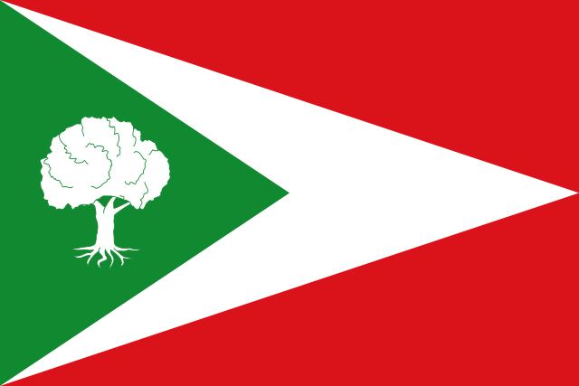 Bandera Tosantos