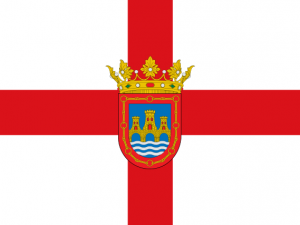 Bandera Tudela