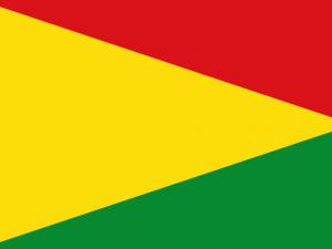 Bandera Val de San Lorenzo
