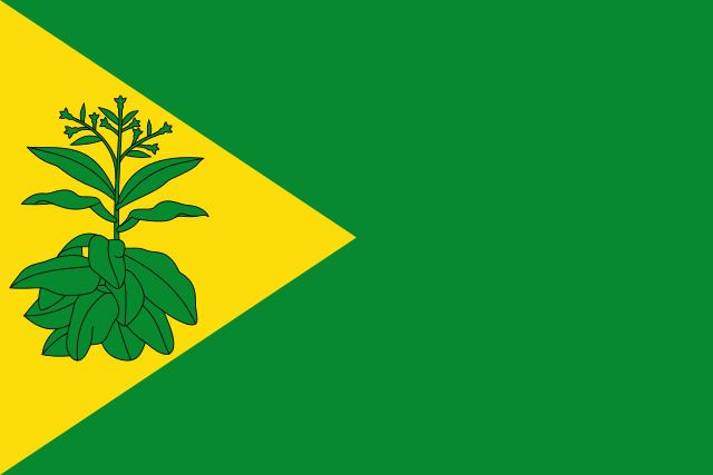 Bandera Valderrubio