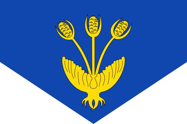 Bandera Vall de Cardós