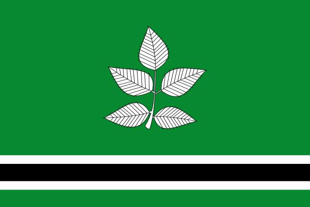 Bandera Vidrà