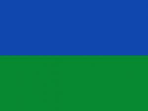 Bandera Villanueva de la Cañada