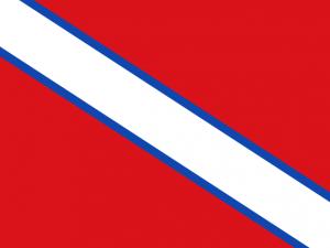 Bandera Villar de Olalla