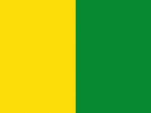 Bandera Yunclillos
