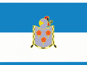 Bandera Zizur Mayor