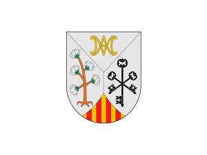 Bandera Ariany