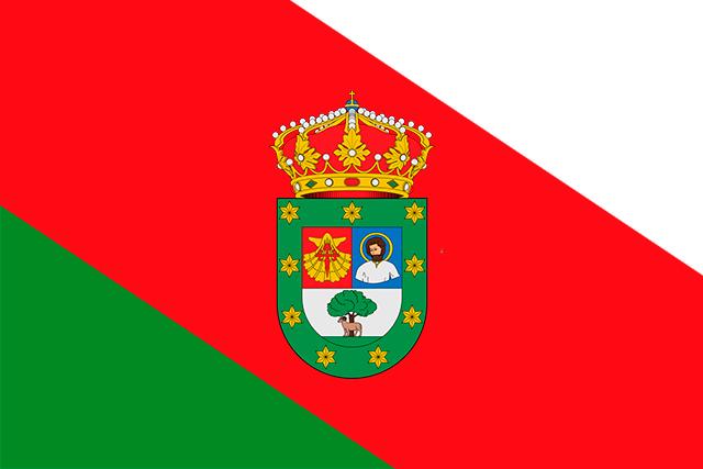 Bandera Barrios de Colina