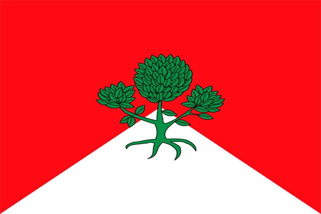 Bandera Bugedo