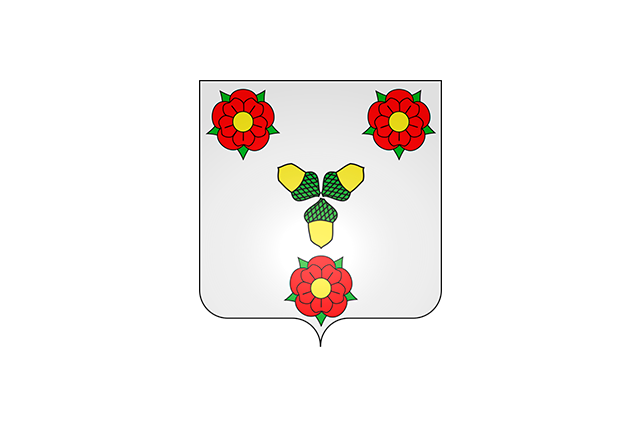 Bandera Curley