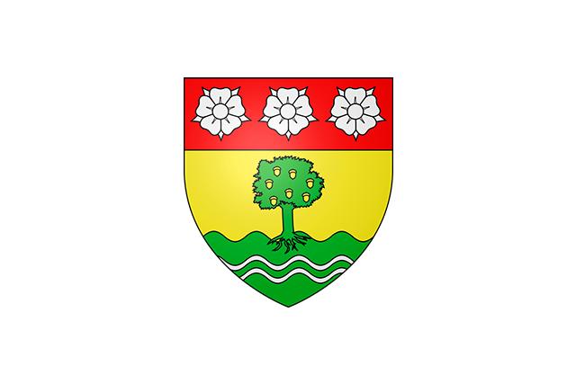 Bandera Draveil
