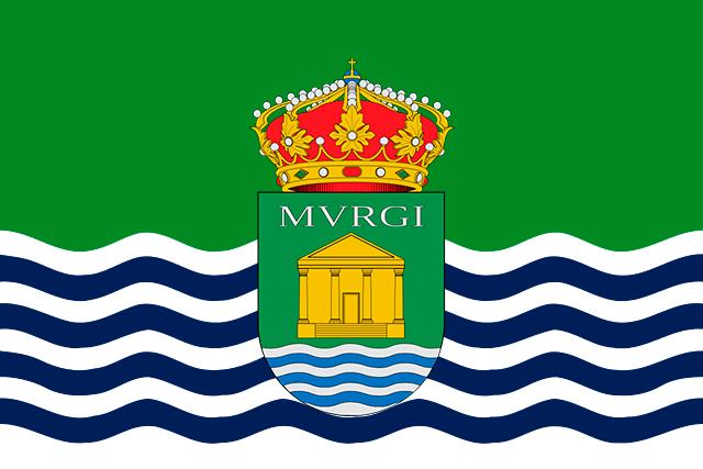 Bandera El Ejido C/E