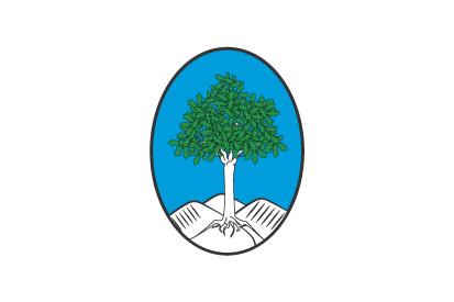 Bandera Fogars de la Selva