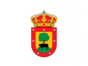 Bandera Fresno de Torote